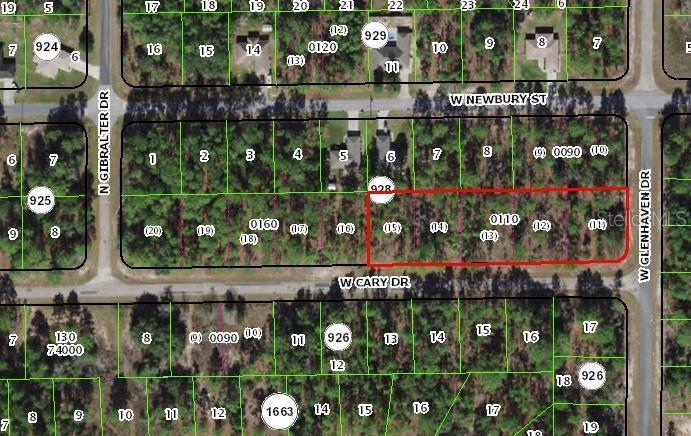 958 W CARY DRIVE, CITRUS SPRINGS, Vacant Land / Lot,  for sale, Ibia  Paradello, Ocala Realty World - Selling All of Florida