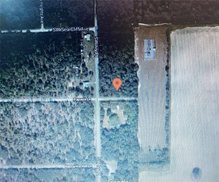 IVY, DUNNELLON, Vacant Land / Lot,  for sale, Ibia  Paradello, Ocala Realty World - Selling All of Florida